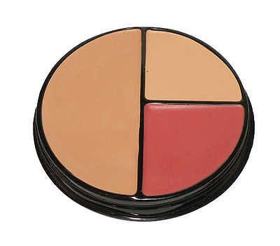 Signature Club A Mistake-proof Makeup Concealer Palette