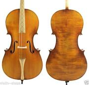 Baroque Cello