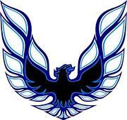 Eagle Hood Decal