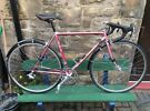 Titanium Raleigh Dynatech Delta 525 bike