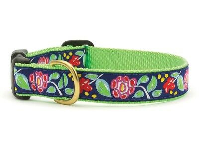 Dog Puppy Design Collar - Up Country - Made In USA - Posey - Choose Size](Puppy Up)