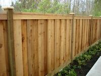 Deck, fence, backyard oasis