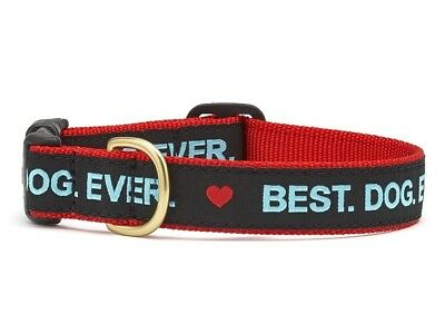 Dog Puppy Design Collar - Up Country - Made In USA - Best Dog Ever - Choose