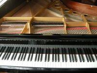 Piano Lessons *2019 Incentive*