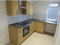 Beautiful Newly Renovated 1/2 Bed Apartment