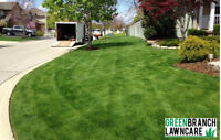$30 ULTIMATE GRASS CUT&TRIM PACKAGE !! WEED REMOVAL 6477859479