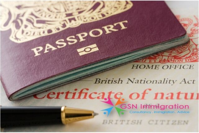 UK VISA IMMIGRATION ADVICE SOLICITOR/LAWYER/ CONSULTANT