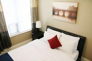 FURNISHED ROOM FOR INDIAN I.T. PEOFESSIONAL-CENTRAL MISSISSAUGA