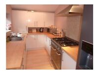 5 month lease on double room in professional houseshare