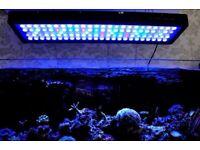 LED FISH TANK LIGHTS Evergrow it2080 v2 pro reef wifi
