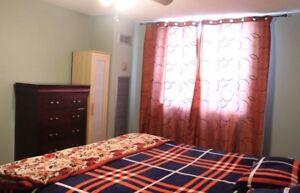 Master Bedroom for rent near Bramalea terminal from September 1