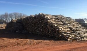 Firewood * 8 Ft Length Hardwood * Spring Special !! $110/cord
