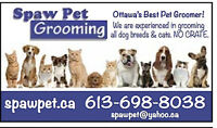 OTTAWA DOG AND CAT GROOMING - CERTIFIED GROOMER