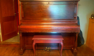 Family Loved Upright Professional Piano