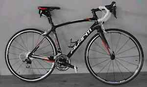 Avanti cadent er2 road bike Seaton Charles Sturt Area Preview