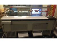 Large commercial serve over display fridge