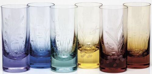 Moser Czech Bohemian Moser Glass Ocean Life HighBall Set New