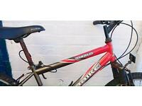 Mountain bikes fixer upper