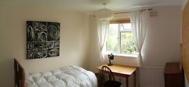 PLEASANT AND SPACIOUS large furnished single in quiet, HiQ North Oxford flat. short or medium term.