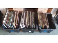 240+ Drum n Bass Vinyl Collection