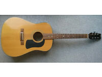 Washburn D10N Acoustic Guitar