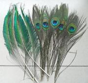 Wholesale Feathers