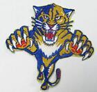 Florida Panthers Patch