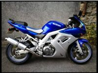 Suzuki SV1000 For Sale