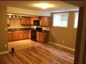 Legal 2 bedroom basement apartment available March 1