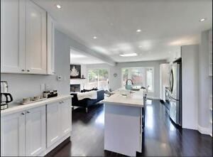 Kitchen Cabinet Design and Installation - vanities and countertops available!