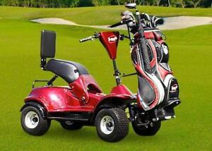 Golf Cart - Easy Ryder - Single Seater !