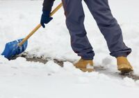 SNOW REMOVAL SERVICES !! NORTH YORK!!