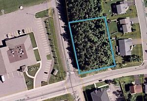 Large Corner lot zoned commercial. 700 Pine Glen Rd Riverview