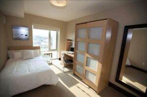 Luxe 1 Sublet- 1 Room w/ Ensuite Bathroom