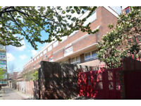 Three bedroomed apartment with spacious private garden - within walking distance of Kings Cross