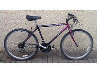 "Bike/Bicycle. GENTS APOLLO "" ZERMATT "" MOUNTAIN BIKE"