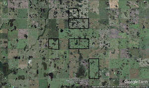 Eight quarters of grain land in Rm of Kellross Regina Regina Area image 1