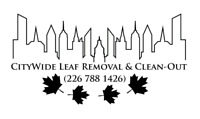 CITYWIDE SERVICES!!! (LEAF CLEAN-UP)