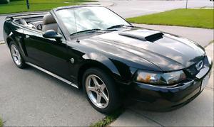 2004 Mustang GT Convertible