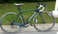 Road Bike Marin Stelvio T3