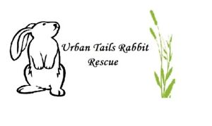 RABBIT CAGES NEEDED