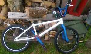 Haro bmx for trade for another bmx or dirt jimper