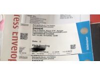 1 standing ticket for Eminem 14th July at Twickenham