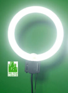 "NEW! 18"" Fluorescent Ring Light with dimmer, diffuser and stand!"
