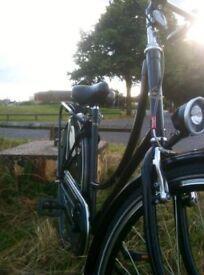 Dutchie bicycle bike chic