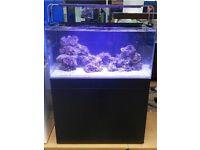Marine reef fish tank reefspace tmc signature 900