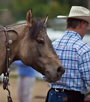 Carl Woods Horsemanship Clinic - September 19th and 20th