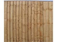 Fence Panels (Feather Edge)