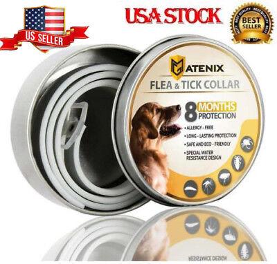 Dewel ATENIX Adjustable Flea and Tick Collar for Small Medium Large Dog 8 Month