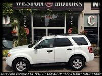 2012 Ford Escape XLT* FULLY LOADED* LEATHER* WHITE ON TAN LEATHE